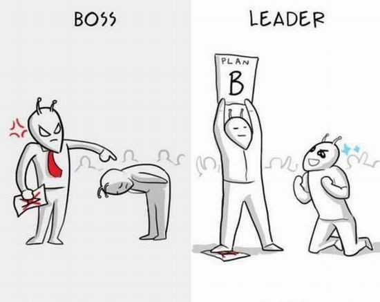 boss and leader 1